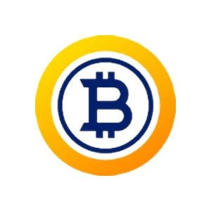 Bitcoin Gold Erfahrungen 2020 Logo.